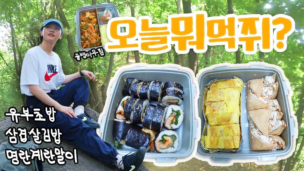 [오늘뭐먹쥐] 3단 도시락 만들고 (먹기위해 간) 등산 브이로그🏃♀️ : 아침부터 삼겹살굽기, 계란말이장인, 벌레 피하느라 운동 다 함🐝(feat.차차,우아girl)
