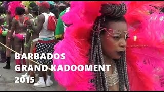 Crop Over Festival Barbados 2015  -  Grand Kadooment