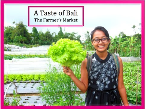 A Taste of Bali - A Visit to an Organic Farm