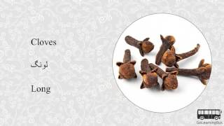 Learn Urdu Visual Dictionary - Herbs and Spices via Videos by GoLearningBus(3D)