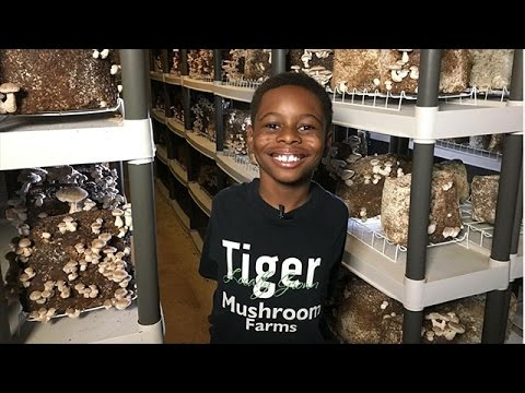 Columbus Neighborhoods: Tiger Mushroom Farms