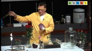 Free Range Chemistry (2008): Sulphur - Burning Sulphur