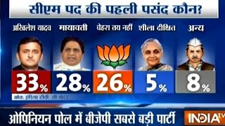 IndiaTV C-Voter Opinion Poll Survey Ahead of Uttar Pradesh Assembly Elections