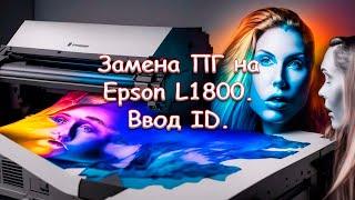 Замена ПГ на Epson L1800. Ввод ID.