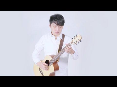 Su Jer?Wintersweet Flower?? aNueNue M1 Newborn Bird Guitar (2015)
