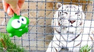 Ам Ням в зоопарке.  Видео с животными и игрушками. Парк львов. Om Nom toys