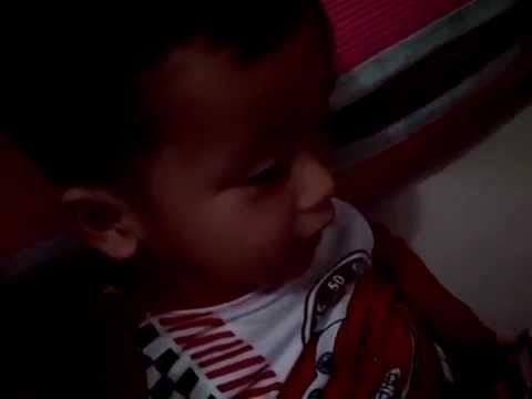 Burung Kakak Tua - My 2 yo Son