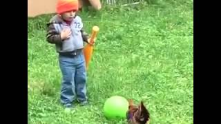 Crianças vs galo muito engraçado kkkkkk