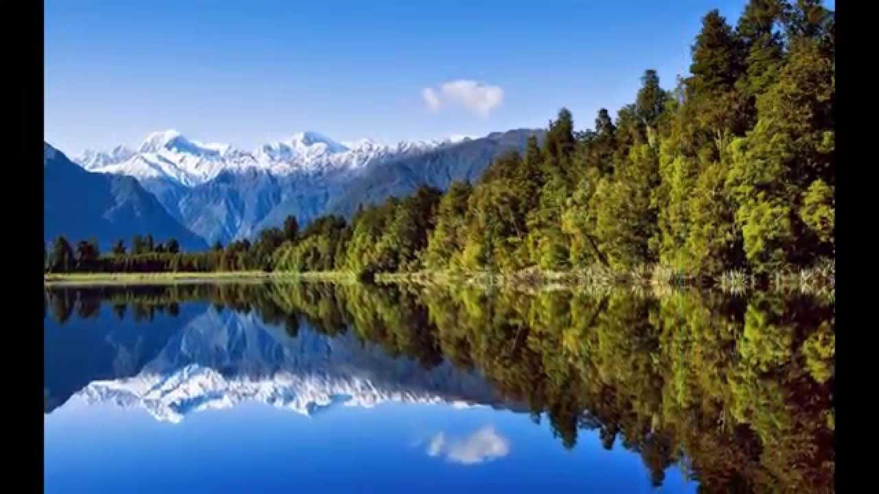 paisajes y cisnes muy bonitos