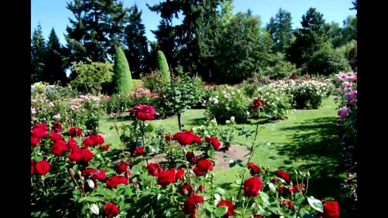 beautiful gardens pictures - youtube