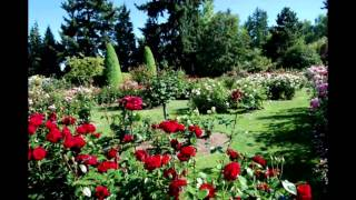 Beautiful Gardens Pictures