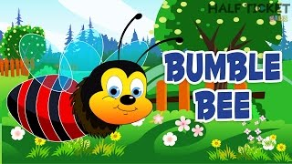 """""""I am bringing home a baby bumbleBee Song 