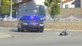 Cat Cop Chase