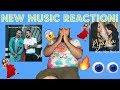 Gerbil Youtube Channel in Familiar & Sin Pijama Reaction |GerbilsWorld| Video on realtimesubscriber.com