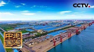 《走遍中国》 20190603 5集系列片《百炼成钢》(1) 择海重生| CCTV中文国际