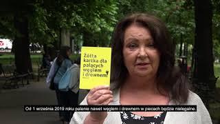 Żółta kartka dla palących węglem i drewnem - Anna Dymna