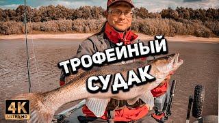 Побил свой РЕКОРД Дерзкая ПОКЛЁВКА огромный СУДАК Рыбалка в Тюмени на спиннинг осенью 2021 года