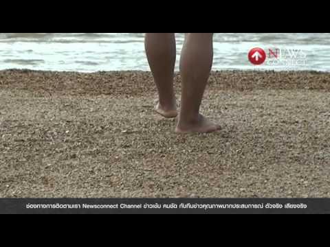 มหัศจรรย์!สันดอนหอยโผล่กลางทะเลตรัง : NewsConnect