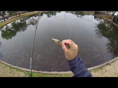 Grand Lakes Bass Fishing (Katy, Tx) 720p HD