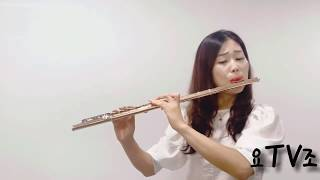 """하울의 움직이는성 ost """"인생의 회전목마"""" 플룻연주"""