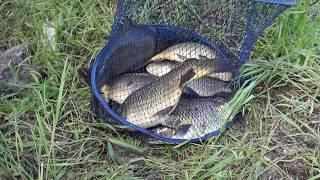 Рыбалка в Болгарии(Болгария Поморье. Друг заразился рыбалкой., 2016-10-21T11:57:35.000Z)