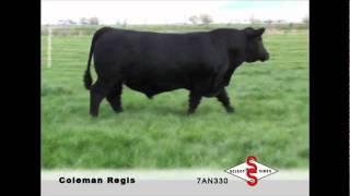 7AN330 Coleman Regis 904