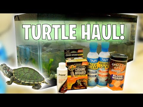 Buying *TONS* Of Baby TURTLE Supplies! (HAUL!!)