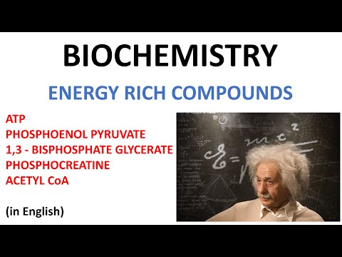 Energy Rich Compunds - ATP, Phosphoenol pyruvate, Bisphospho ...