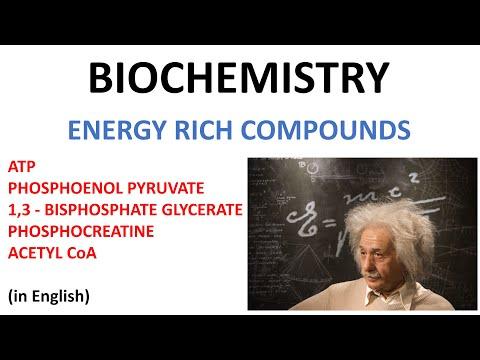 Energy Rich Compunds - ATP, Phosphoenol pyruvate, Bisphospho ...