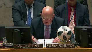 В.А.Небензя на заседании Совета Безопасности ООН по Сирии