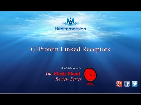 G Protein linked 2nd Messengers, G protein coupled receptors, GPCRs