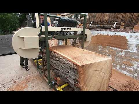Hudson Warrior sawmill - slabbing a large elm tree