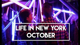 Life in New York - October (first Knicks game at Madison Square Garden)