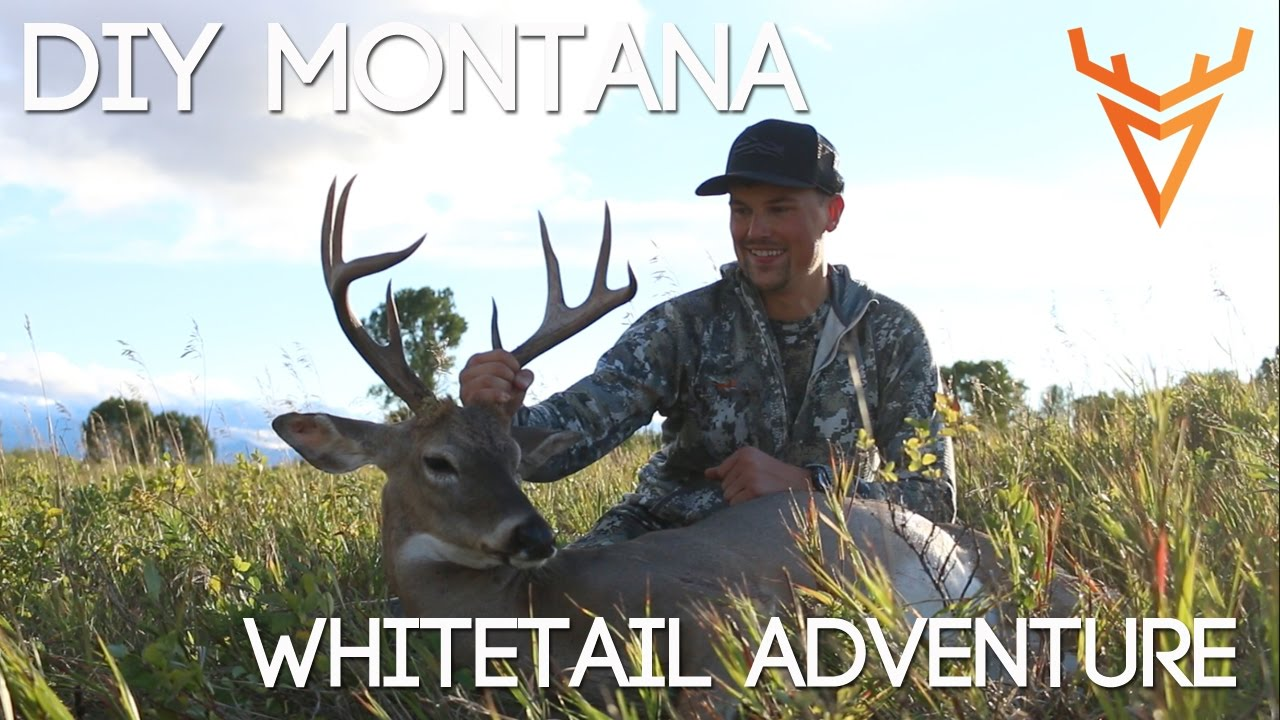 Wired To Hunt 2016 #1: A DIY Montana Whitetail Adventure - YouTube
