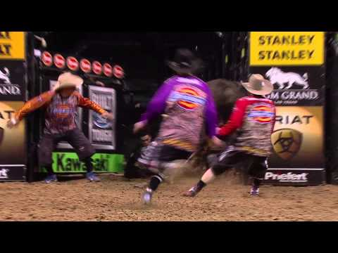 WRECK: Marco Eguchi takes a hit from Super Cool Cat (PBR)