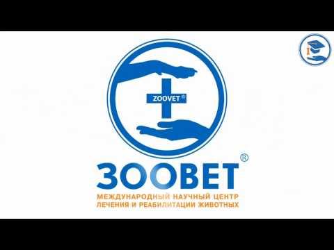 Офтальмологи в Москве — 196 врачей, 357 отзывов на