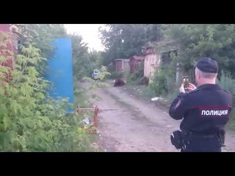 В Балакове на двух мужчин напал медведь