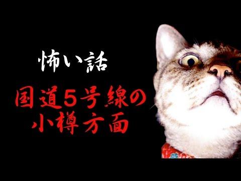 怖い話/国道5号線の小樽方面  怪談 機械朗読!