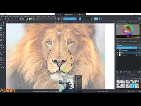 Как рисовать льва в программе Krita 1