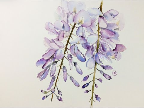 Watercolor Wisteria Flowers Painting Demonstration