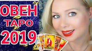 ОВЕН ТАРО ПРОГНОЗ НА 2019 год от Olga Stella