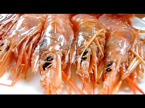 Eating Japanese Food Sashimi Aka Ebi Raw Argentine Red Shrimp