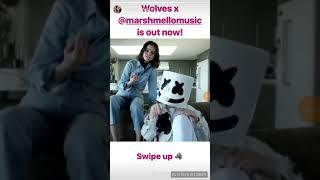 Selena Gomez, Marshmello - Wolves ft instagram (visualize)