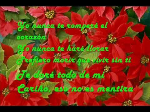 I'll Never Break Your Heart-Traducida al Español