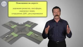 ОБЖ 8 кл Организация дорожного движения, обязанности пешеходов и пасс