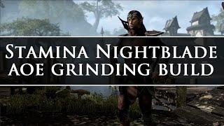 ESO - AOE Grind Build - Stamina Nightblade - Non-vet/vet leveling!