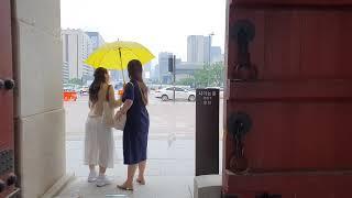 [D7] 비오는 날 평화로운 경복궁 산책 Peacefu…