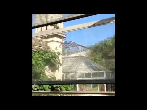 Art trip to botanic garden, Oxford University HD