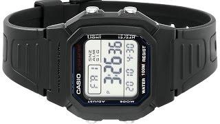 Casio Men's W800H 1AV Classic Sport Watch with Black Band