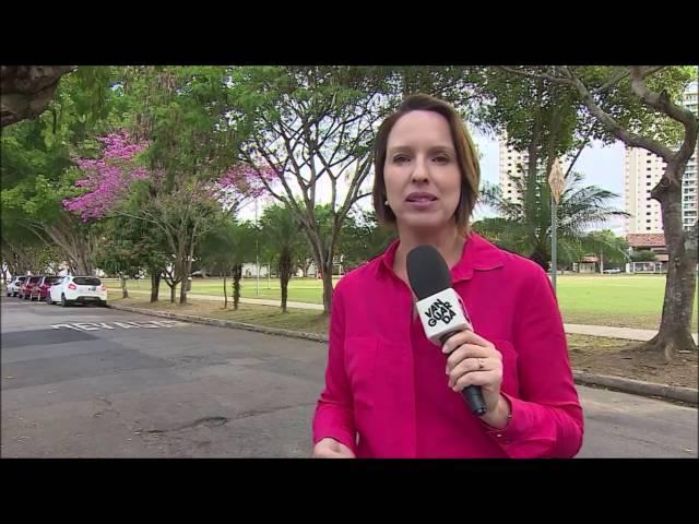 Reportagem sobre a Arborização das cidades.
